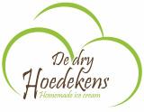 DE DRY HOEDEKENS LIER